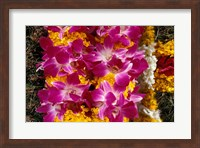 Framed Asia, Singapore. Flowers for sale