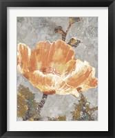 Framed Spice Poppy I