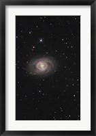 Framed Messier 95, A Barred Spiral Galaxy in the Constellation Leo