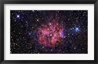 Framed Cocoon Nebula