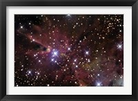 Framed Cone Nebula and Christmas Tree Cluster