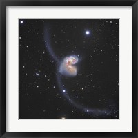 Framed Antennae Galaxies in the constellation Corvus