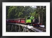 Framed Puffing Billy Steam Train, Dandenong Ranges, near Melbourne, Victoria, Australia