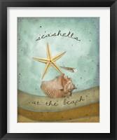 Framed Seashells
