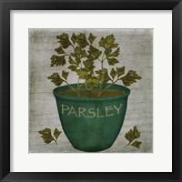 Herb Parsley Framed Print