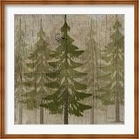 Framed Pines
