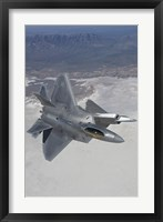 Framed Two F-22 Raptors over New Mexico (vertical)