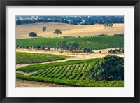 Framed Mountadam vineyard winery on High Eden Road, Barossa Valley, Australia