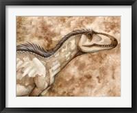 Framed Allosaurus