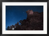 Framed Moon Rises through Trees in Oklahoma