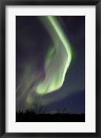 Framed Aurora Borealis with Orion's Belt, Yukon, Canada