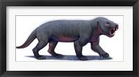 Framed Kayentatherium, a Mammal-like Tritylodont of the Jurassic Period
