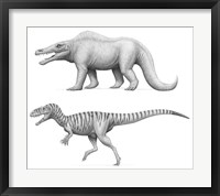 Framed Megalosaurus Bucklandii, Past and Present