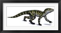 Framed Protosuchus