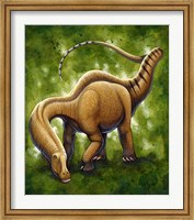 Framed Apatosaurus