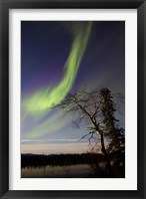 Framed Aurora Borealis over the Yukon River, Whitehorse, Canada