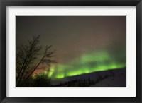 Framed Aurora Borealis, Twin Lakes, Yukon, Canada