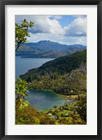 Framed Queen Charlotte Track, Marlborough Sounds, South Island, New Zealand