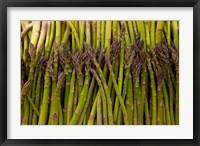 Framed Scotts asparagus farm, Marlborough, South Island, New Zealand
