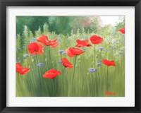 Framed Backyard Poppies