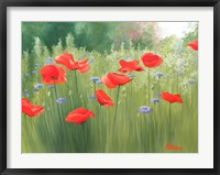 Framed Backyard Poppies