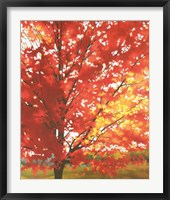 Framed Red Tree