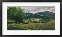 Framed Spring in Carmel Valley