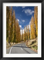 Framed Autumn, Rangitikei District, North Island, New Zealand
