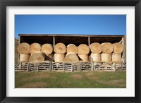 Framed Hay Barn, Ahuriri Valley, North Otago, South Island, New Zealand