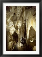 Framed Stalactites, Ruakuri Caves, North Island, New Zealand