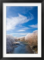 Framed Manuherikia River and Hoar Frost, Ophir, Central Otago, South Island, New Zealand