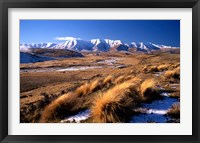 Framed Tussocks and Hawkdun Range, Central Otago, New Zealand