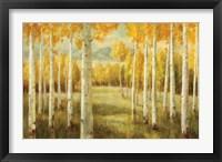Framed Aspens