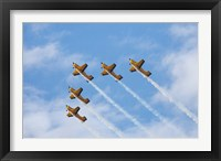 Framed Vintage Airplanes