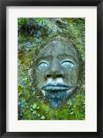 Framed Art At Lochmara Lodge, South Island, New Zealand