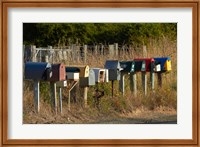 Framed Rural Letterboxes, Otago Peninsula, Dunedin, South Island, New Zealand