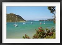 Framed Yachts moored in Waipiro Bay, North Island, New Zealand