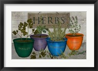 Framed Potted Herbs