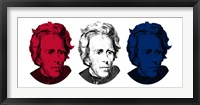 Framed Andrew Jackson in Red, White and Blue