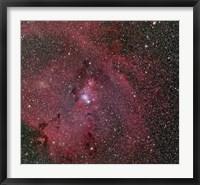 Framed Cone and Christmas Tree Nebula