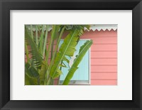 Framed Palm and Pineapple Shutters Detail, Great Abaco Island, Bahamas