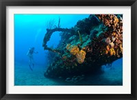 Framed Scuba diver, RMS Rhone wreck, British Virgin Isl