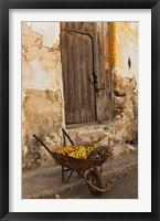 Framed Bananas in wheelbarrow, Havana, Cuba