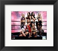 Framed WWE Total Divas posing