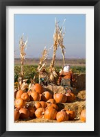 Framed Pumpkin, hay bales, scarecrows, Fruitland, Idaho
