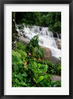 Framed Rainforest waterfall, Serra da Bocaina NP, Parati, Brazil (vertical)