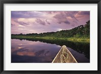 Framed Paddling a dugout canoe, Amazon basin, Ecuador