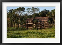 Framed Scenes along the Amazon River in Peru