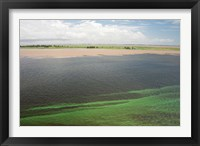 Framed Brazil, Amazon River, Santarem Meeting of the Waters Algae bloom