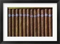 Framed Cuba, Pinar del Rio Province, Cuban Cigars Art Print image